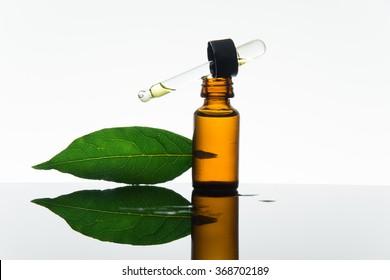 Bay essential oil, bay oil, bay essence, bay leaves, amber glass bottle, dropper
