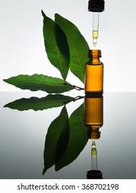 Huile essentielle de baie, huile de baie, essence de baie, feuilles de baie, bouteille de verre ambré, drophile