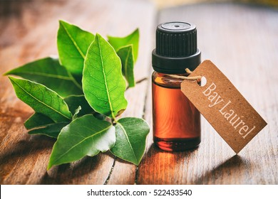 Bay laurel essential oil and fresh twig on wooden background. Tag with text bay laurel