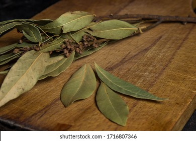 Bay leaf branch on a wooden board