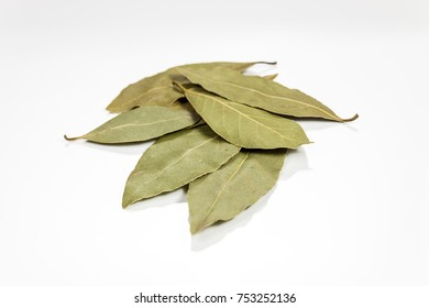 Bay leaf isolated on white reflective surface