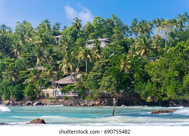 Bay of Mirissa. Hill with expensive resorts at the seaside of the tourist spot. The beach at the south coast is very popular among surfer. It is also a fishing port and a main whale watching point