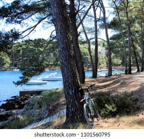 bay near Mali Losinj, island Losinj, Croatia