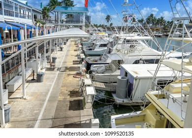 Bayfront marina in Miami Florida