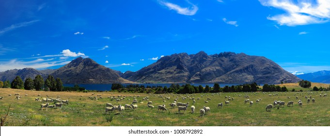Bayonet Peaks and Cecil Peak Queenstown, New Zealand. Stunning scenery landscape with blue sky, green grass and sheep. Lake Wakatipu.