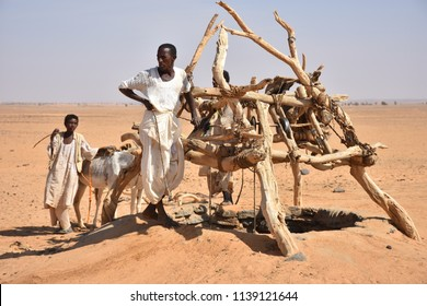 Bayuda, Sudan - November, 19, 2017: Nomads with herd of camel, sheep and goats pulling out water of a deep fountain in the desert