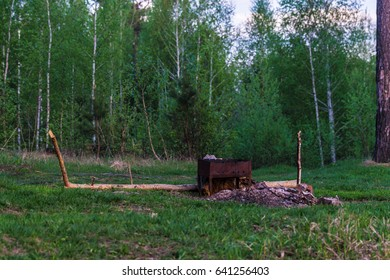 BBQ in the woods