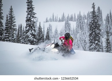 BC Back Country Snowmobiling