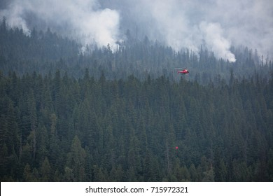 BC Wildfire Red Helicopter  Visible Trees