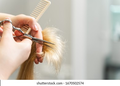 Be attentive. Focused photo on female hands that holding scissors and comb while doing hairstyle