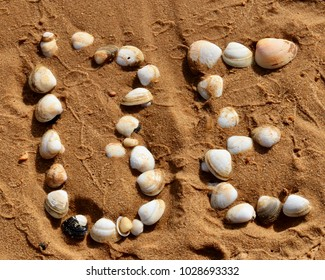 Be in a seashell formation