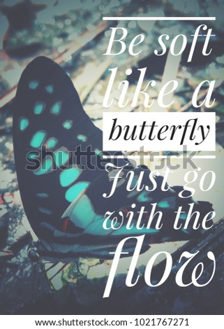 Be Soft Like Butterfly Just Go Stock Photo Edit Now 1021767271
