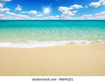 bea tropical sea