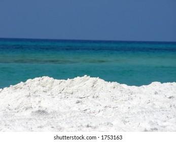 Beach along the Gulf of Mexico.