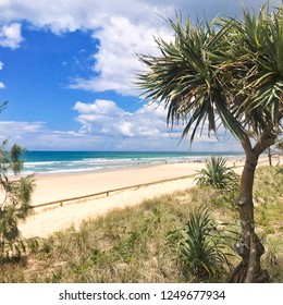 Beach in Australia.  Goldcoast city