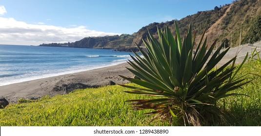 Beach at Azores landscape, Ponta Delgada, São Miguel island