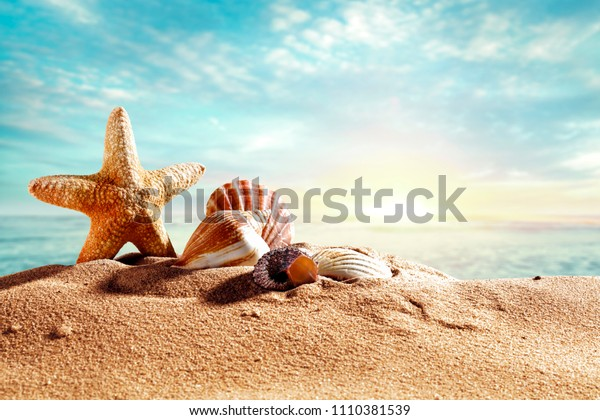 Beach background with shell and free space for your decoration