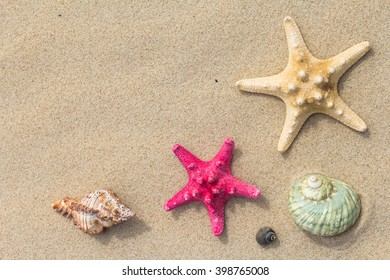 Beach in the background: Top view of a sea shells and stars.