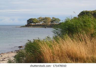 beach at the baltic sea near staberdorf, fehmarn, germany