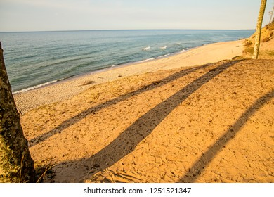 beach of the Baltic Sea with trees and shadows