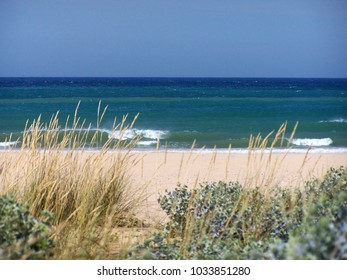 Beach in Barbate in Andalusia ( South of Spain )