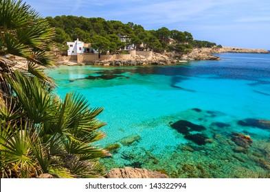 Beach bay azure turquoise sea water hill pine tree, Cala Gat, Majorca island, Spain
