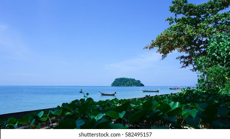 The beach of the beautiful island in Krabi, Thailand. The small long tail boats are parking on the sea bay or gulf. Green Ipomoea pes-caprae and trees on the land.