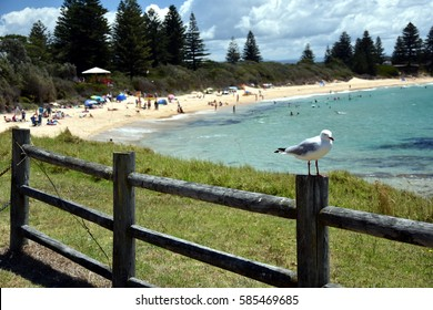 Beach at the Bermagui. Bermagui is a town on the south coast of NSW, Australia in the Bega Valley Shire. The name is derived from the Dyirringanj word, permageua, meaning canoe with paddles.