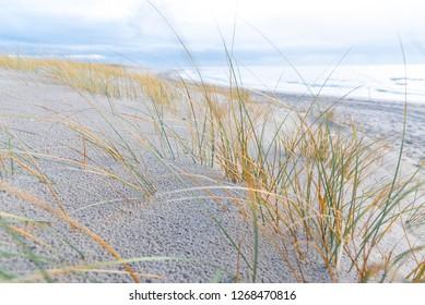 Beach in Blavand, Denmark