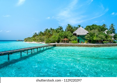 Beach bungalow. Luxury escape. Tropical paradise. Honeymoon at Maldives. Palms and white sund. Maldives beautiful beach background white sandy tropical paradise island with blue sky