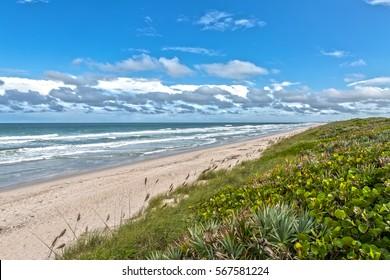 Beach at Canaveral National Seashore at Cape Canaveral Florida