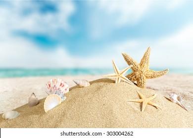 Beach, cancun, sunlight.