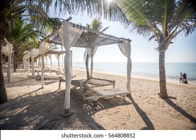 Beach canopy among palms by Indian Ocean, Kenya