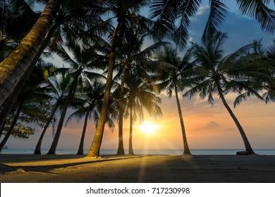Beach of the Caribbean islands
