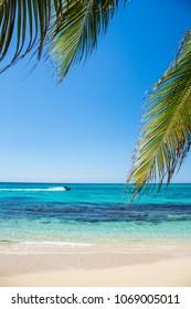 Beach in the Caribbean in Jamaica