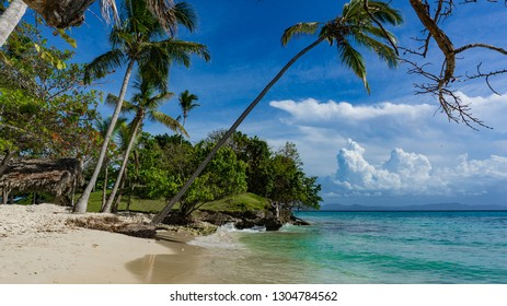 beach in the Caribbean on Bacardi Island, Cayo Levantado with waves and palm trees in the Atlantic, north of the equator