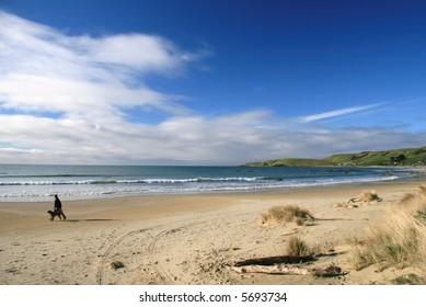 beach, catlins