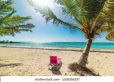 Beach chair by a palm tree in Raisins Clairs beach in Guadeloupe, French west indies. Lesser Antilles, Caribbean sea