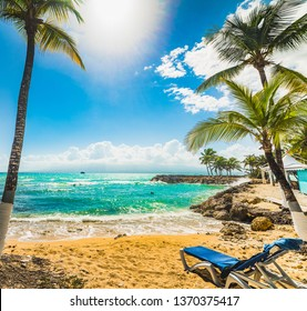 Beach chair and Coconut palm trees in Bas du Fort beach in Guadeloupe, French west indies. Lesser Antilles, Caribbean sea
