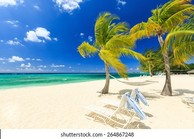Beach chairs and palm trees at 7 mile beach, Grand Cayman