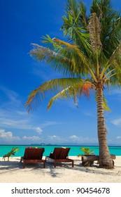 Beach chairs under a palm tree on Lipe island, Thailand
