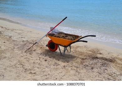beach clean up in Spain