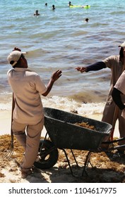 Beach cleaners with a cart.