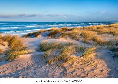 Beach with Coastal Dunes, Stormy Sea