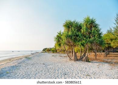 Beach coastline, Gili Meno, Indonesia