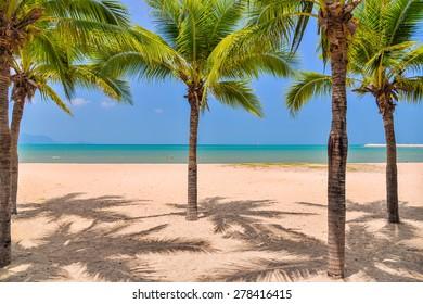 Beach with coconut tree in Baan Ampoe Beach (najomtien), Pattaya, Thailand