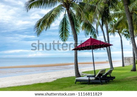 Beach coconut tree and chair