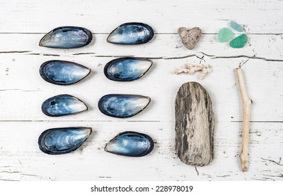 Beach collections still life.Seashells, woods, sea glasses on white wood background.