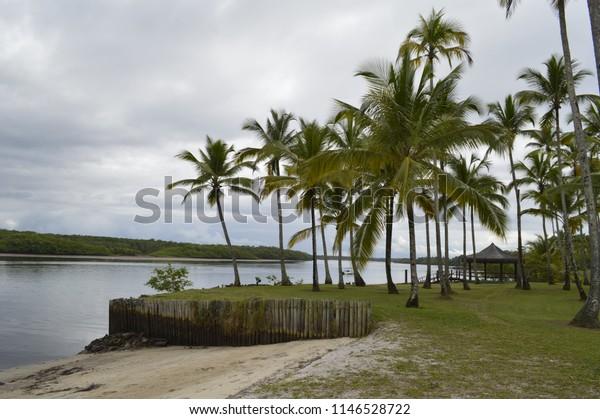 At the beach at Comandatuba Island Brazil