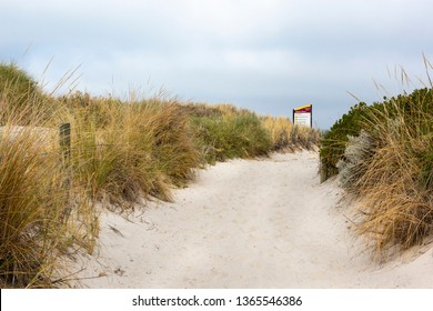 Beach Dune restoration project in Clayton's ​Beach Perth Australia